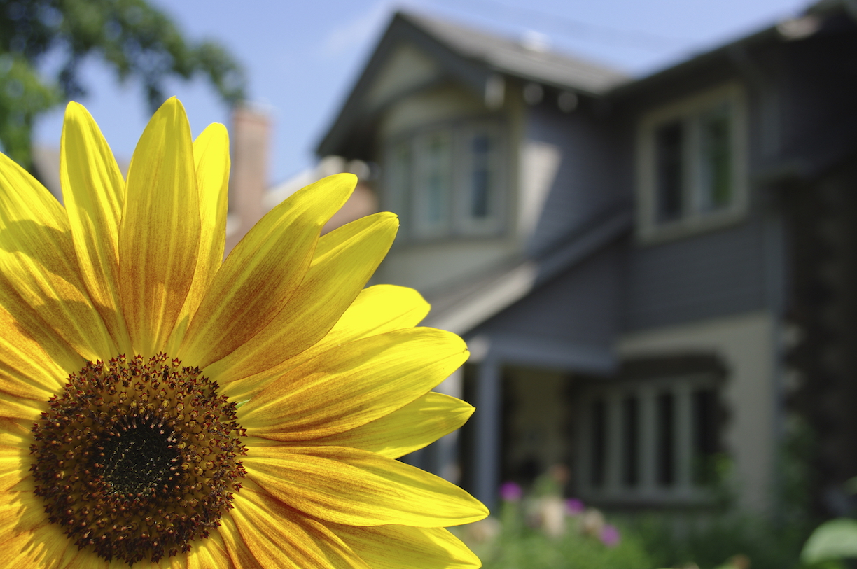 Selling Your Home in the Springtime