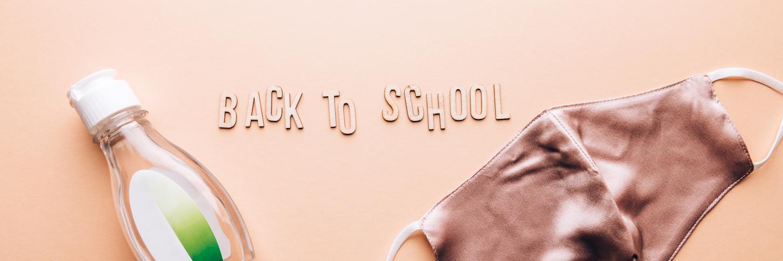 Sending Children to School